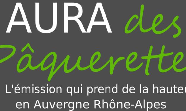 AURA des Pâquerette #01, Des Sapins Et Un Lac – Coton Tige