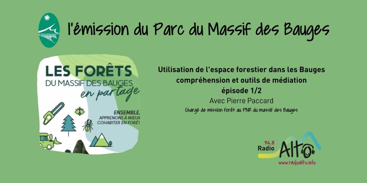 Espace forestier, historique et outils de compréhension 1/2 – les Racines du Futur