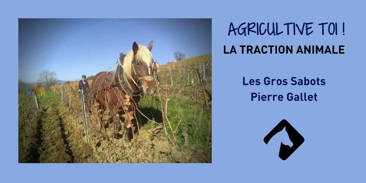 Agricultive toi ! Pierre Gallet – Les Gros Sabots