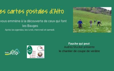 Les cartes postales d'Alto – Fauche qui peut