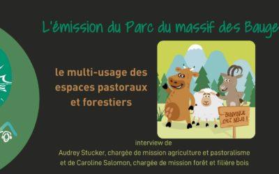 Multi-usage des espaces pastoraux et forestiers – une émission du Parc des Bauges