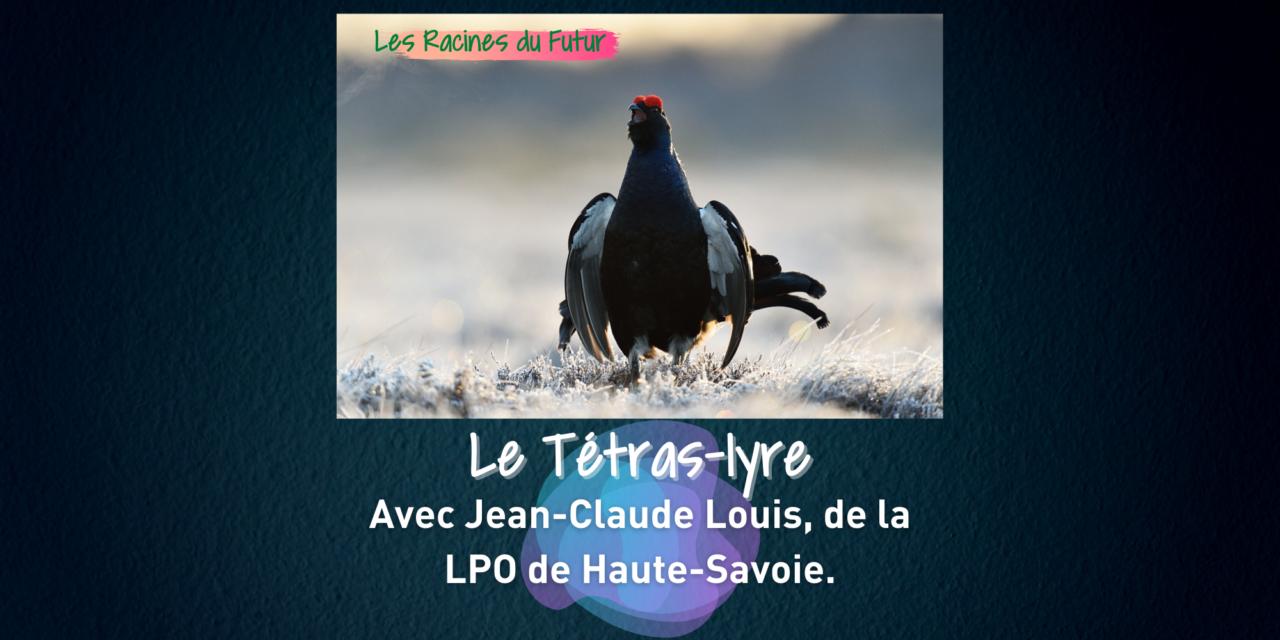 Le Tétras-lyre avec Jean-Claude Louis de la LPO 1/2 – Les Racines du Futur