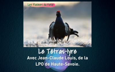 Le Tétras-lyre avec Jean-Claude Louis de la LPO 2/2 – Les Racines du Futur