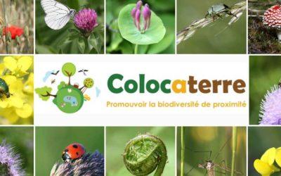 Colocaterre à la rencontre de la biodiversité de proximité
